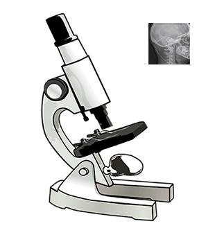 etudes Stimulation Occipitale